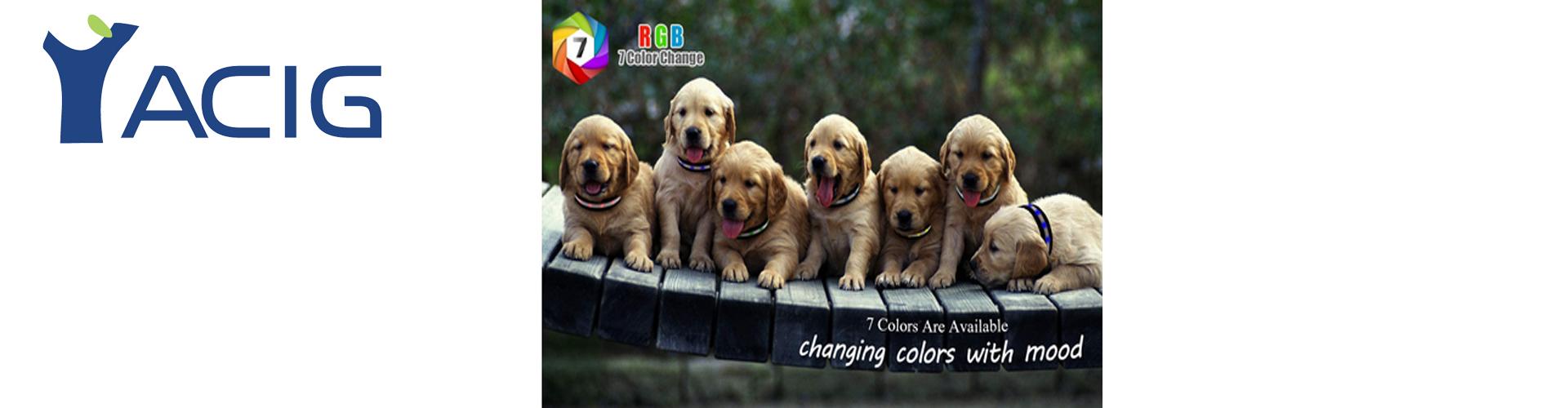 Yacig Dog Collars